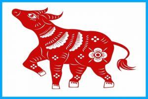 chinese zodiac: the ox